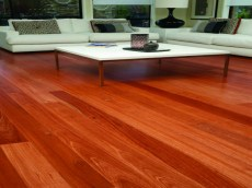 Sydney Blue Gum Engineered Timber Floor